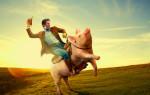 Мужчина Свинья — Кабан