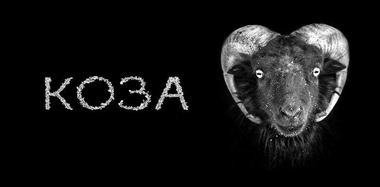 Год Козы (Овцы) - Самодосуг