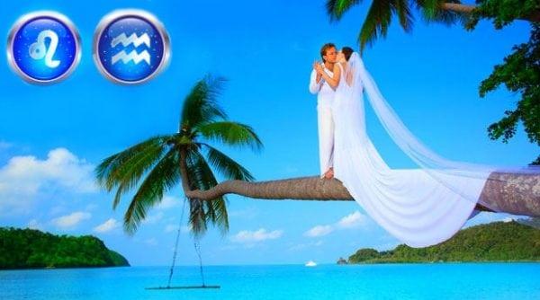 влюбленная пара на пальме