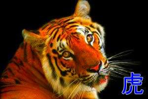 личность тигра
