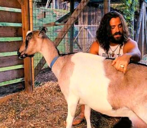 мужчина и коза