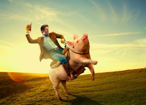 мужчина и свинья