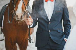 мужчина и лошадь