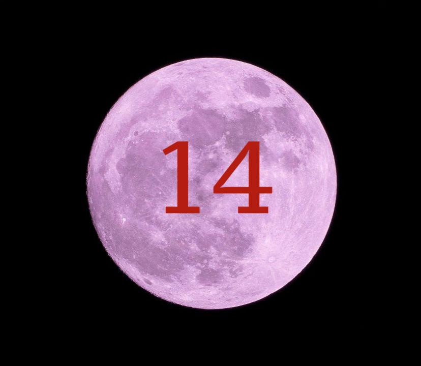 Луна в доме 14