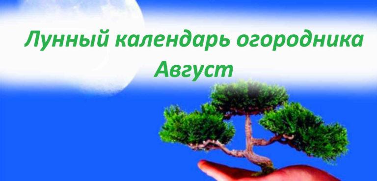 Лунный календарь на август
