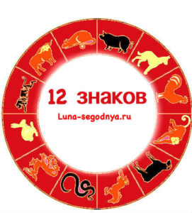 12 знаков