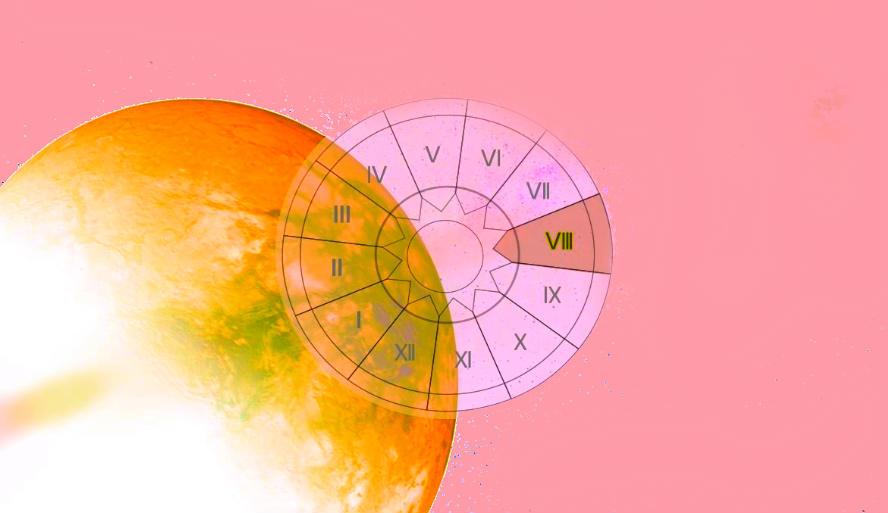 планета дом 8