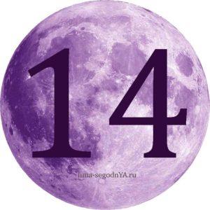 лунный день 14