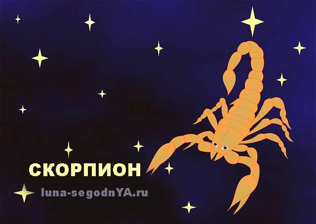 Родитель-Скорпион