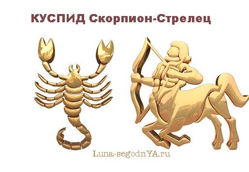 Куспид Скорпион-Стрелец