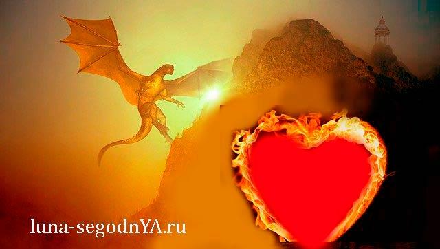 Дракон любовь
